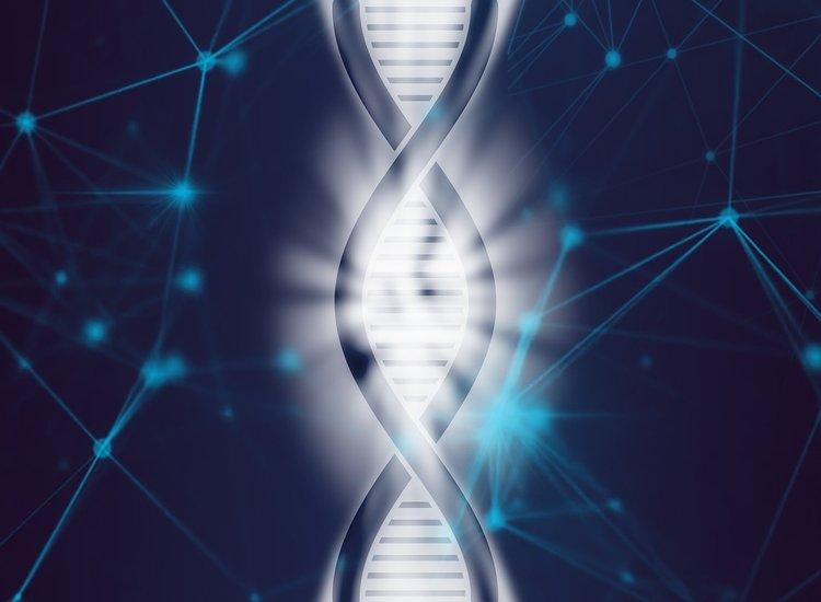¿Cómo cambiará la Inteligencia Artificial la medicina en 10 años?