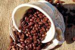Lenovo colabora, con la IA como ingrediente secreto, en la selección del café perfecto
