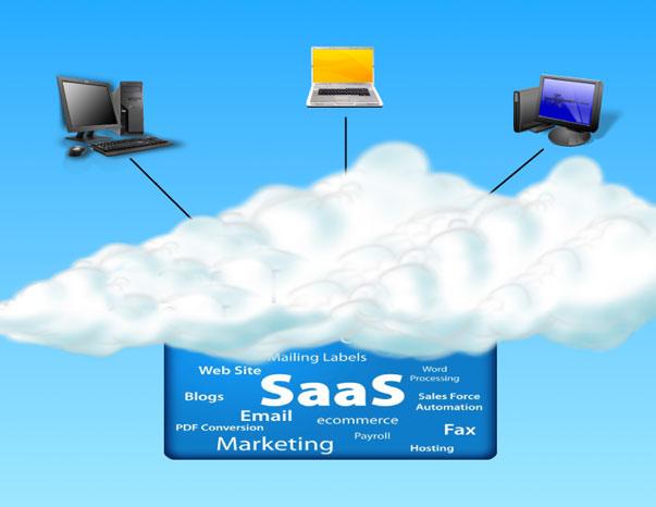El mercado de SaaS alcanza los 153 millones de euros en 2010, un 48% más que en 2009