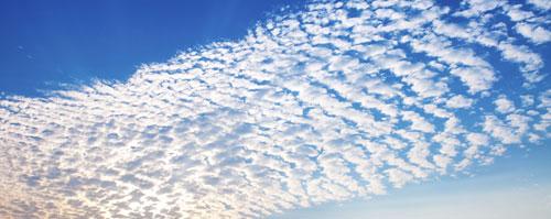 CA Cloud computing