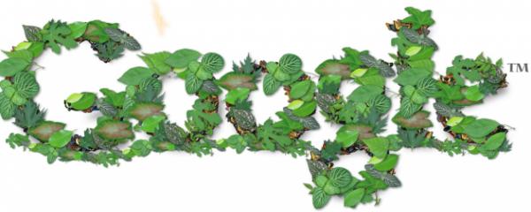 Google sigue trabajando 'en verde'