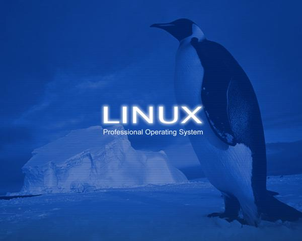 linux_pro,_professional_operating_system