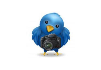 Twitter, en pleno desarrollo de un buscador de imágenes