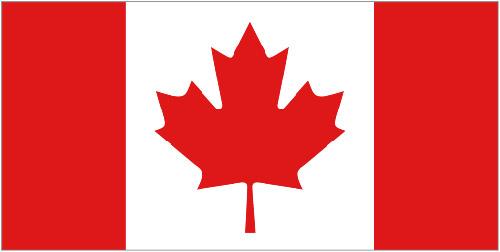 La posible prohibición de Canadá a la subasta de las patentes de Nortel