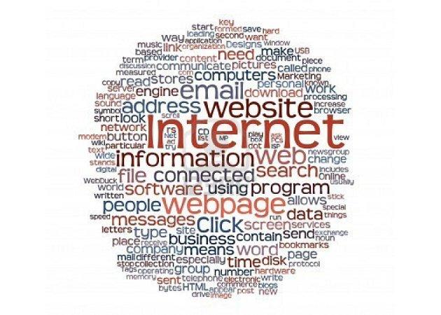 Las cifras de Internet en 2011 (Profesional)
