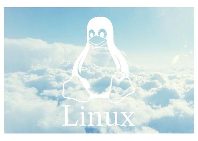 Red Hat y SUSE Linux, a por 'la nube' contratando mano de obra