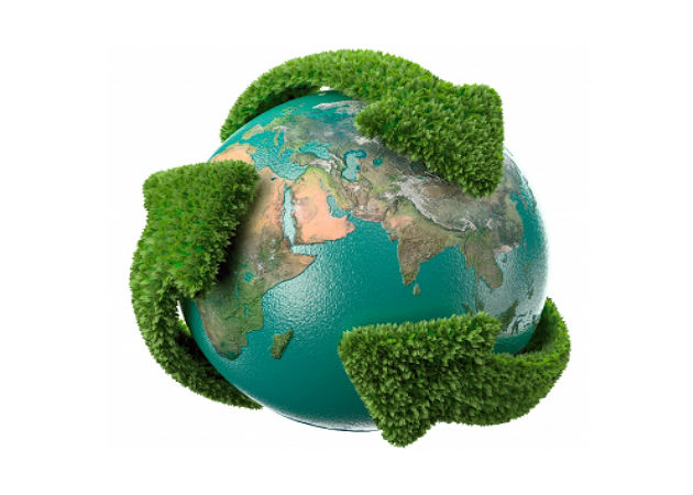 Google, la empresa más ecológica según Greenpeace