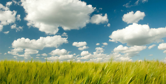 Alojar la nube
