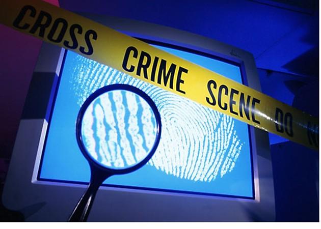 Europol lidera un estudio sobre el Futuro del Cibercrimen