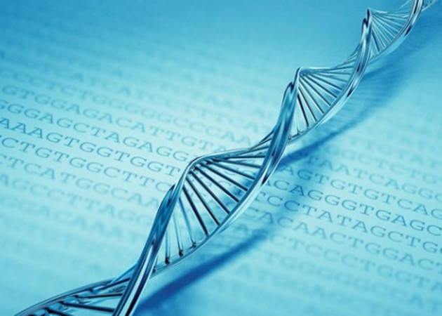 Almacenan 700 Tbytes de datos en un gramo de ADN