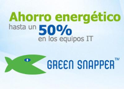 Green Snapper