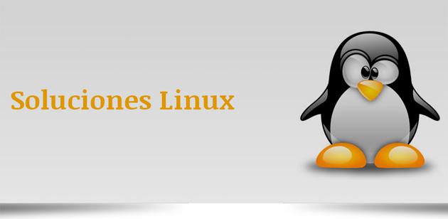 Las soluciones Linux pueden reducir hasta un 80% los gastos de software y hardware