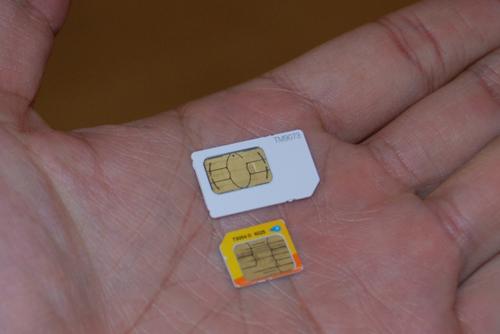 SIM Apple