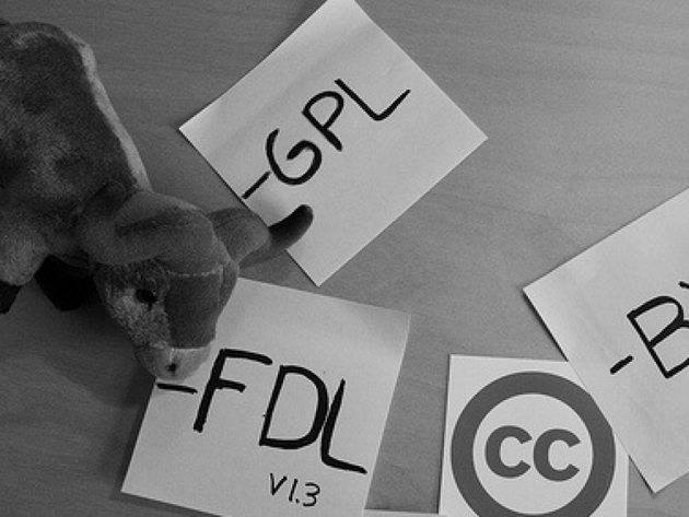 Auditoría de licencias de software