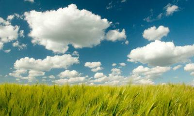 DaaS, MaaS y DRaaS: la evolución de los servicios en la nube