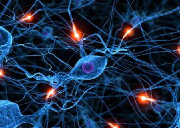 1.000 millones para crear una inteligencia artificial que recree el cerebro humano