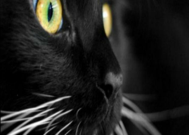 Viernes 13: la superstición se adentra en el universo TIC