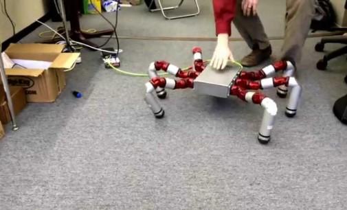 Un robot con seis patas capaz de superar cualquier terreno