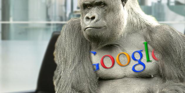 Google Photos Gorillas fallo