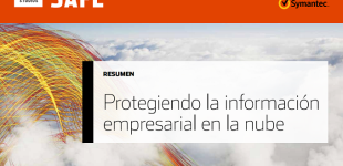Informes técnicos: Cómo proteger la información empresarial en la nube