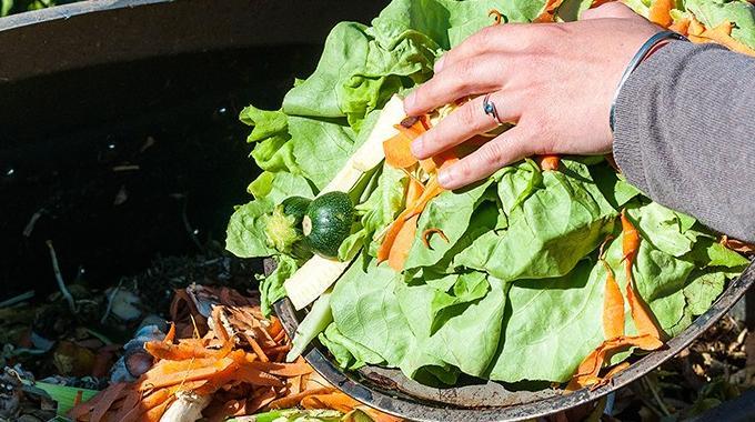 El IoT ayudará a reducir el desperdicio de alimentos