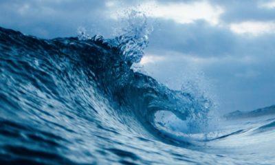 Salesforce amplía el ecosistema de su nube Wave Analytics
