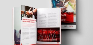 "Descárgate nuestro ebook: ""Big Data as a service"""
