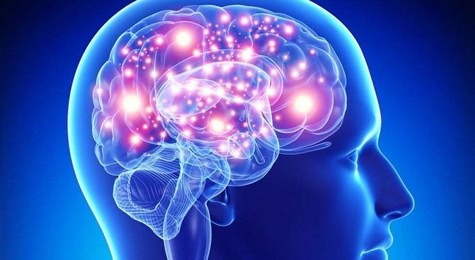 Proyecto Brainwave