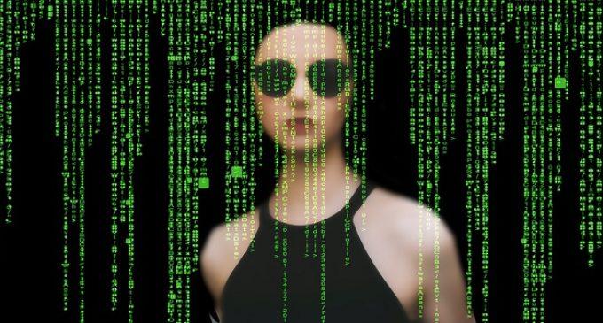 ¿Guerra entre los cibercriminales?