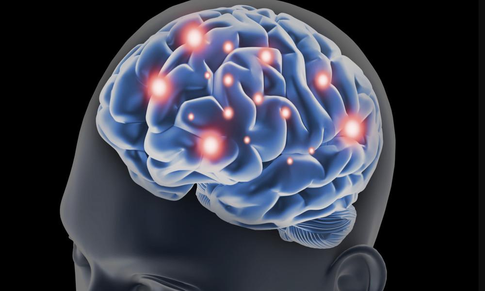 Blue Brain 5