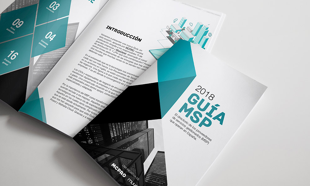 guía MSP
