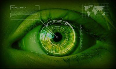 compañía de seguridad Thales con investigadores y expertos de IDC entre 1.200 directivos de nueve países.