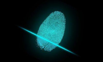 Descubren 60.000 packs con identidades digitales completas de internautas en un mercado online