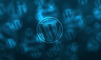 WordPress.org presenta Wordpress 5.2, centrada en la protección y la seguridad