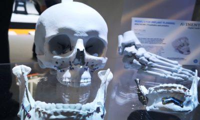 órgano en 3D