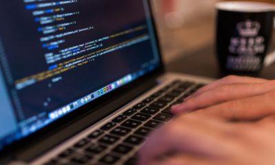 Los 12 sabores de Python más interesantes para los programadores