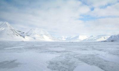 GitHub en el Ártico