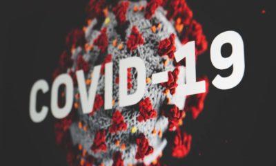 Desde marzo se han perdido en Estados Unidos 117.000 puestos de trabajo relacionados con el sector tecnológico por culpa de la crisis del COVID-19.