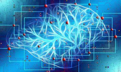 IBM y Pfizer desarrollan un modelo de IA para predecir el Alzheimer antes de que se manifieste
