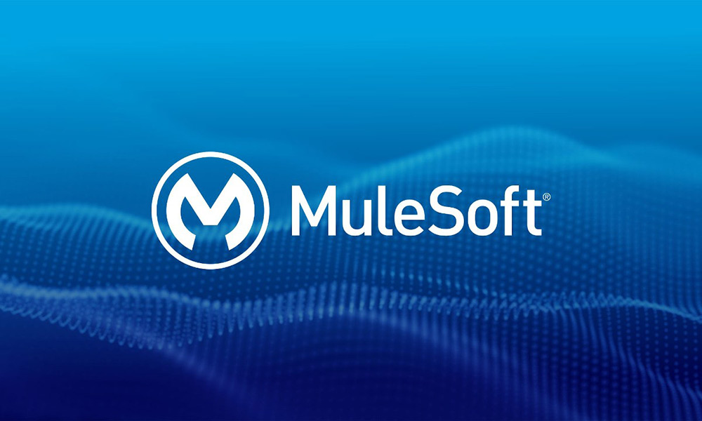 mulesoft-anypoint