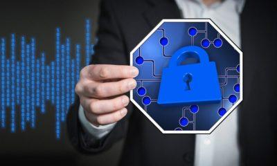 IBM y AMD colaborarán en avance de computación confidencial e Inteligencia Artificial