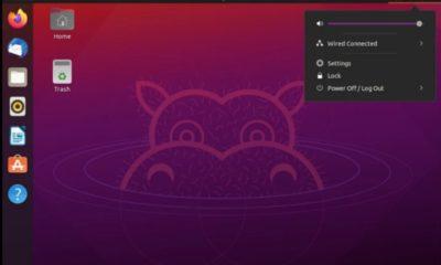 Ubuntu Linux 21.04 se lanza a por el mundo de la empresa