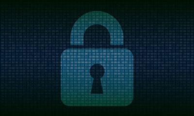 Deloitte compra TransientX y Sentek para dar un impulso a su área de ciberseguridad