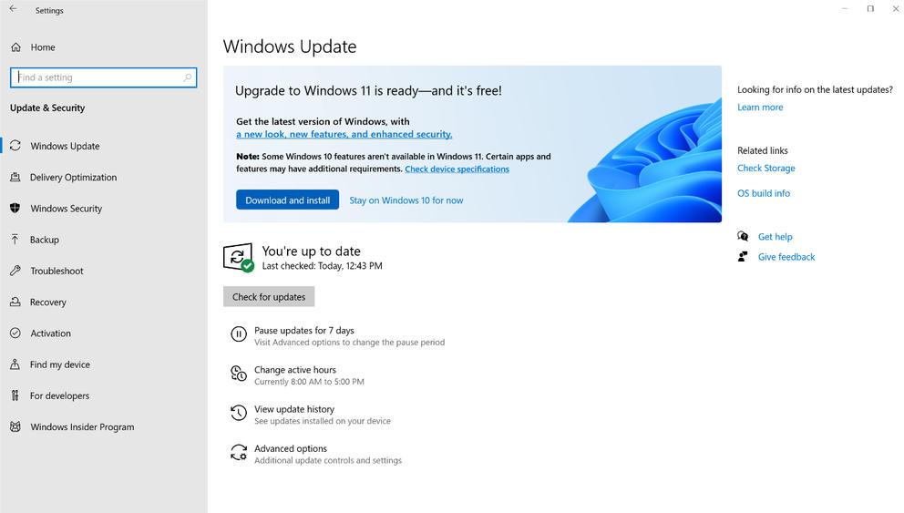 Windows 11 para empresas
