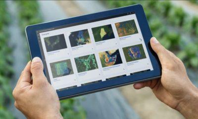 IBM anuncia una suite de herramientas de inteligencia medioambiental: Environmental Intelligence Suite